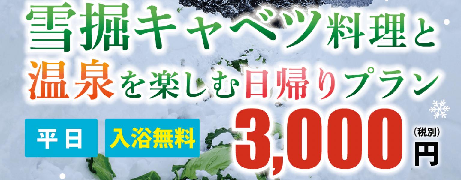 yukihori_3000